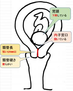 口 方 子宮 開き 子宮口の開き具合を確認する方法: 15